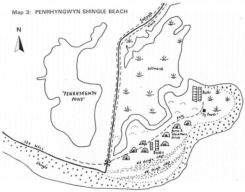 Penrhyngwyn Shingle Beach